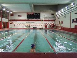 Vermillion Area Swim Team